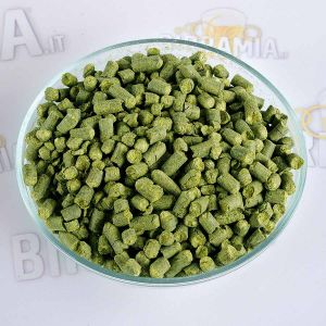 Luppolo Northern Brewer 100 g (Pellet)